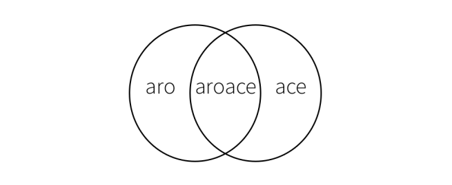 "A Venn diagram of overlapping circles. One circle is labelled ""aro"", the other ""ace"" and the space between ""aroace""."